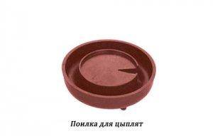 poilka-dlya-tsyplyat